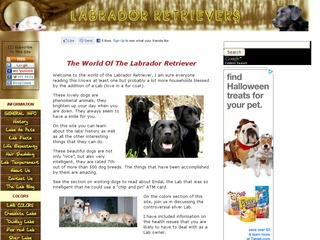 Labrador Retriever Information