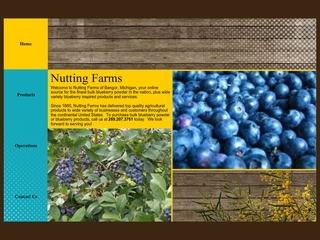 Bulk Blueberry Powder Products by Nutting Farms